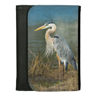 Great Blue Heron at the Pond Wallet