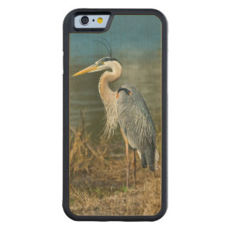 Great Blue Heron Bird at the Pond Maple iPhone 6 Bumper Case