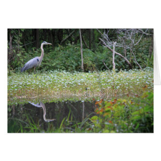 Great Blue Heron Goose Creek Notecard