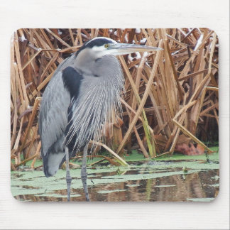 Great Blue Heron Hunting In Winter Mouse Pad
