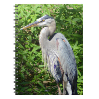 Great Blue Heron Notebook