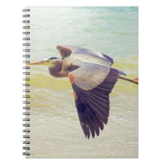 Great blue heron notebooks