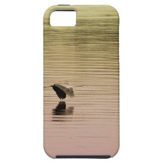 Great Blue Heron on Gradient Background Case For The iPhone 5