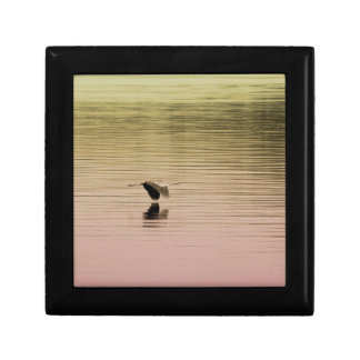 Great Blue Heron on Gradient Background Gift Box