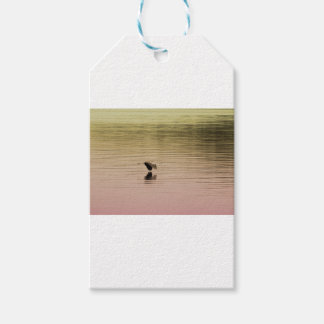 Great Blue Heron on Gradient Background Gift Tags