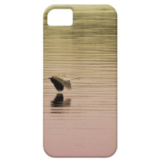 Great Blue Heron on Gradient Background iPhone 5 Cover