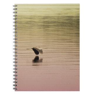 Great Blue Heron on Gradient Background Notebooks
