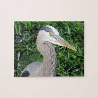 Great Blue Heron Puzzle