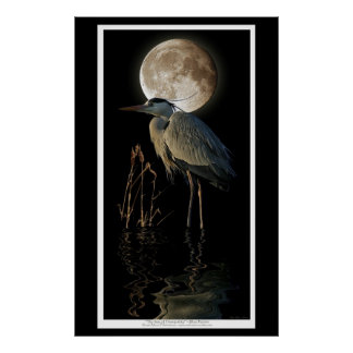 Great Blue Heron, Reeds & Moon Nature Art Print