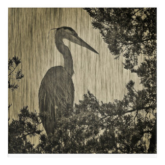 Great Blue Heron Sepia Tone Photographic Art