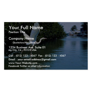 Great blue heron (white phase), Key Largo, Florida Business Card Template