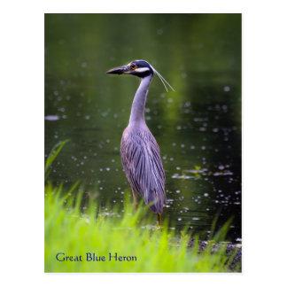 Great Blue Heron Wildlife Series # 20 Postcard