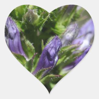 Great Blue Lobelia (Lobelia siphilitica) Heart Sticker