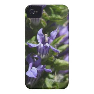 Great Blue Lobelia (Lobelia siphilitica) iPhone 4 Cover