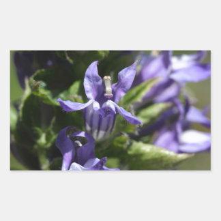 Great Blue Lobelia (Lobelia siphilitica) Rectangular Sticker