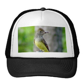 Great Crested Flycatcher Hat