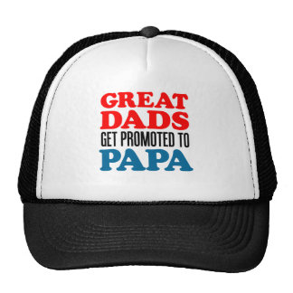 Great Dads Promoted Papa Cap