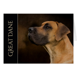 Great Dane Blank Greeting Card
