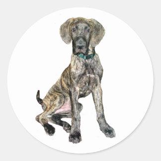 Great Dane Brindle Puppy Round Sticker