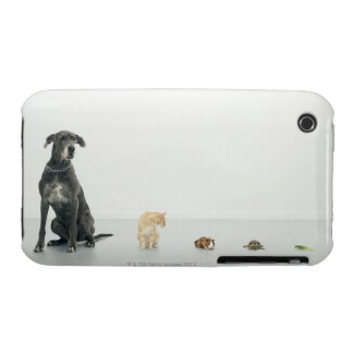Great Dane, cat, guinea pig, tortoise and slug iPhone 3 Case