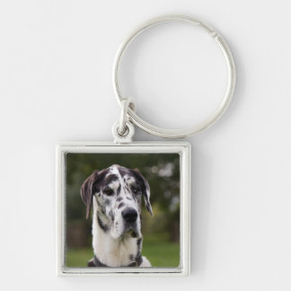 Great Dane dog portrait keychain, gift idea Silver-Colored Square Key Ring