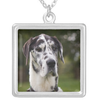 Great Dane dog portrait necklace, gift idea Silver Plated Necklace