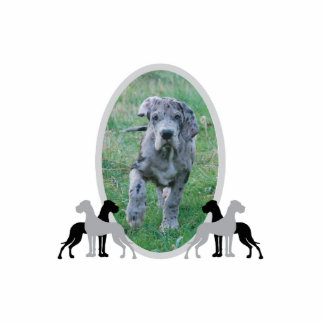 Great dane frame standing photo sculpture