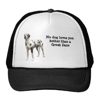 Great Dane Harlequin Hat