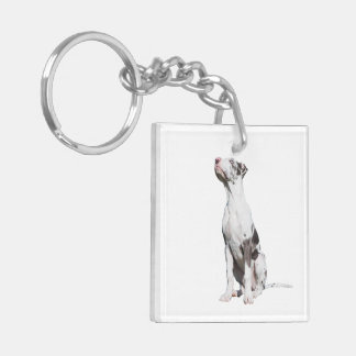 Great Dane harlequin puppy dog beautiful photo Double-Sided Square Acrylic Key Ring