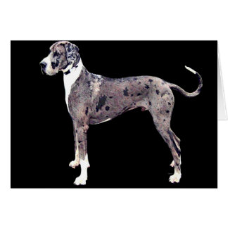 Great Dane 'Heffner' greeting Card