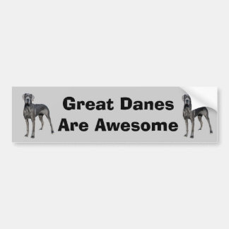 Great Dane King of Dogs Bumper Sticker