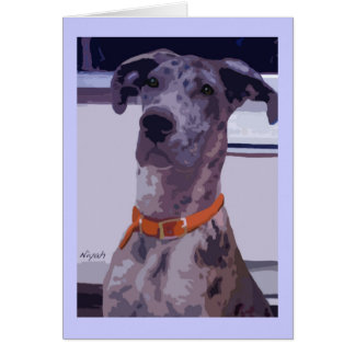 Great Dane Merle Girl Card