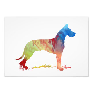 Great Dane Photo Print
