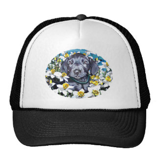 Great Dane Pup in Daffodils Blue Mesh Hats