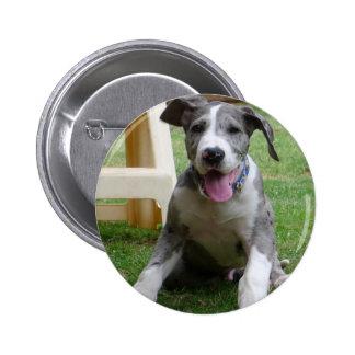 Great Dane Puppy 6 Cm Round Badge