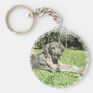 Great Dane Puppy Keychain