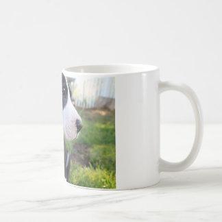 Great Dane Puppy Coffee Mugs