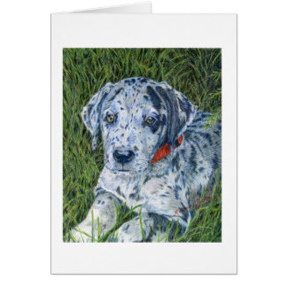 Great Dane Puppy Notecard Note Card