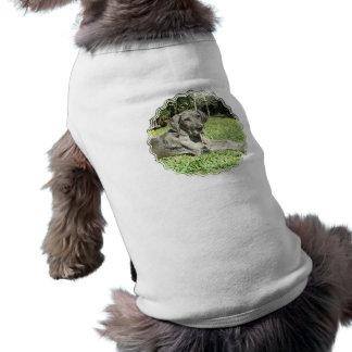 Great Dane Puppy Pet Shirt