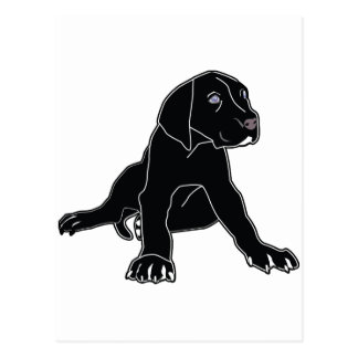 Great Dane Puppy Post Card