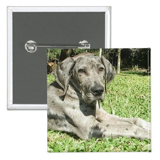 Great Dane Puppy Square Pin