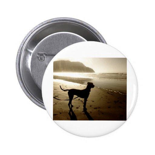 Great Dane Puppy Sunset Pins