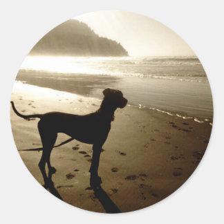 Great Dane Puppy Sunset Stickers