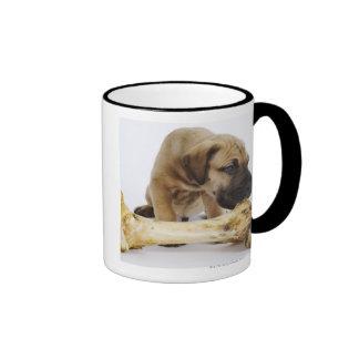 Great Dane puppy with bone in studio Mug