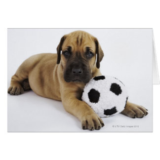 Great Dane Puppy with Soccer Ball Card