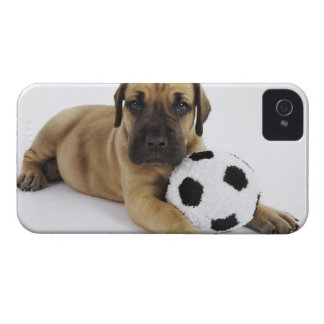 Great Dane puppy with toy soccer ball iPhone 4 Case