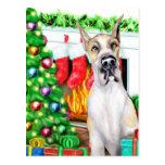 Great Dane Stockings Fawnequin Post Card