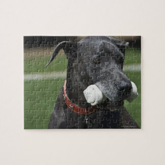Great Dane with bone Puzzle