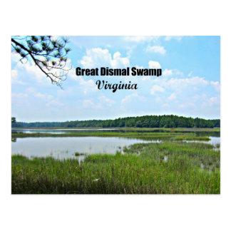 Great Dismal Swamp - Virginia Postcard