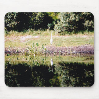 Great Egret and Its Reflection Mousepad